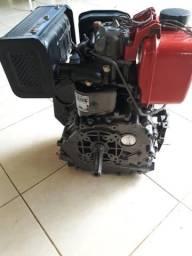 Motor Forth 7hp DIESEL 100% revisado