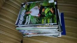 Revistas globo rural