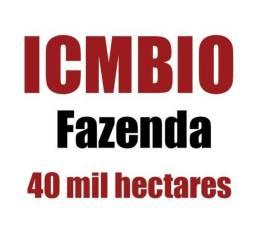 Fazenda com 40 mil hectares com Icmbio no amazonas, toda documentada, credito de carbono