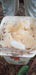 Mel de abelha puro ???30 reais o litro