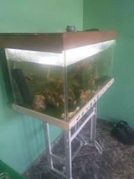 Título do anúncio: Troco ou vendo aquário em celular