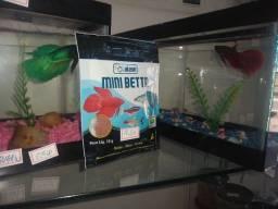 Título do anúncio: Aquário Míni Betta