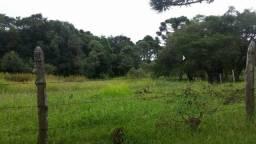 Terreno em Contenda - São José dos Pinhais