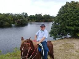 Excelente fazenda de 840 tarefas às margens do rio paraguaçú, com sede e curral