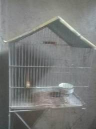 Viveiro para periquitos, calopisitas, e papagaio