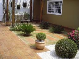 Jardinagem e paisagismo em geral