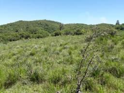 312  hectares de campo
