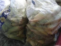 15,00 o saco ou 0,50 a espiga de milho verde