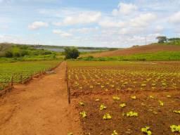 Fazendas no rn é com daniel fazendas whats 84. *