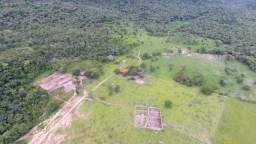 Excelente fazenda 70 km de Cuiabá MT 1.000 hectares