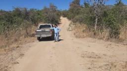 Fazenda 54 Alqueires Municipio de Cocalzinho