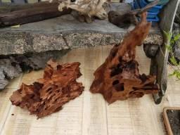 Aquarismo decoração de troncos