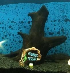 Tronco aquario tratado
