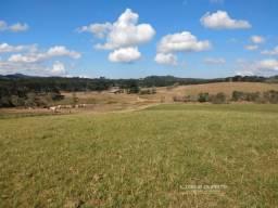 Fazenda Pecuária para Venda em Lençol São Bento do Sul-SC
