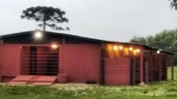 Barracão - Cocheiras - Baias - Deposito - Parceria e Alugo - Hotelaria Cavalo