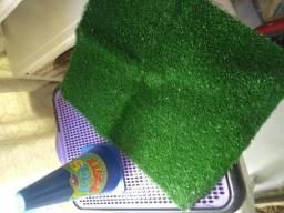 Tapete Higiênico - Xixi Green - Cone para cachorros