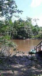 Terreno às margens do rio Anauerapucu entre Santana e Mazagão
