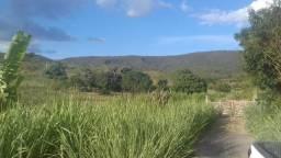 Oportunidade Fazenda de 170 hectares por 510mil