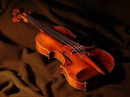 Aulas de Violino Particular