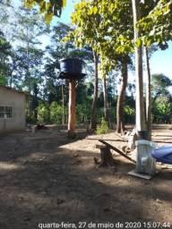Negócio Próprio,4,0 Alqueires,1000 pés Banana Fritar,rio Cuiabá,Região Nobres e Rosário-MT