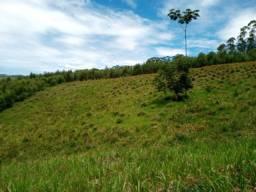 Terrenos de 1000 MTS m2 (AB)