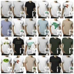 Título do anúncio: Camisa Amazônia original