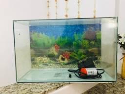 Título do anúncio: Vendo aquário