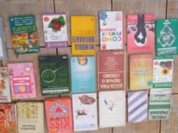 Livros diversos escritores ,escola faculdade empreses