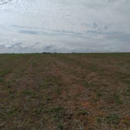 Fazenda em monte carmello 412 hectares 18.000.000.00