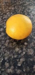 Vendo laranja