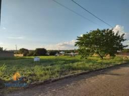 Terreno à venda, 275 m² por R$ 49.500,00 - Loteamento Bertaville - Palmas/TO