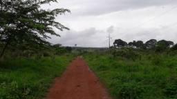 Área 2000 hectares Novo Mundo