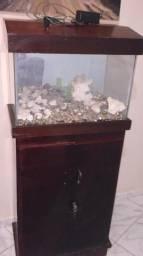 Lindo aquário já com o móvel