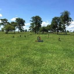Fazenda à venda por R$ 6.000.000 - Zona Rural - Nova Andradina/MS
