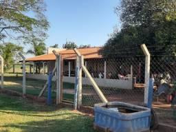 Sítio de 31 ms2  - Montadinho na pecuária- 8 km de  Araçatuba