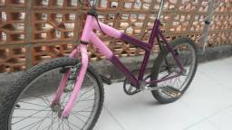 Bicicleta $100