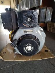 Motot diesel 7 HP usado