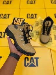Sapatos Botas Cat