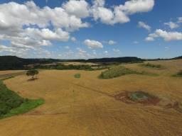 Area Plantio Soja 300 hectares - Produz 110hectares - Abre + 40ha