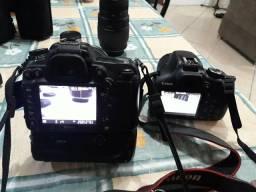 Câmeras nikon e canon