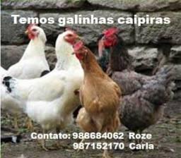 GALINHA CAIPIRA