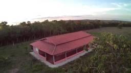 1871/Ótima fazenda de 529 ha com estrutura para pecuária em João Pinheiro