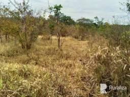 Título do anúncio: Fazenda com dupla aptidão na região de Miranorte - TO