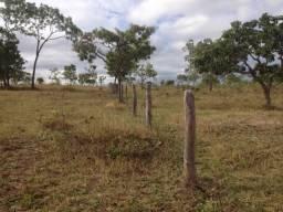 Fazenda de 22 alqueires para lavoura a venda na região de Caldas Novas GO