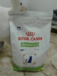 Racoes urinárias gato