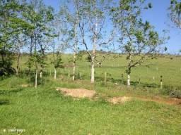 Pa06 Área Rural para Venda, Águas de Chapecó / SC