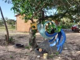 Vendo Sítio Barreirinhas Maranhão