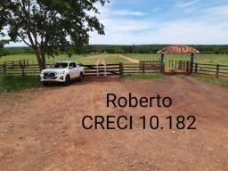 Título do anúncio: Fazenda de 772 ha, a 6 km de Nioaque