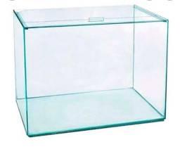 Título do anúncio: Kit aquario 3l+ decorações+ aquecedor