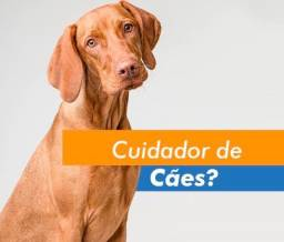 Título do anúncio: Cuido do seu animalzinho